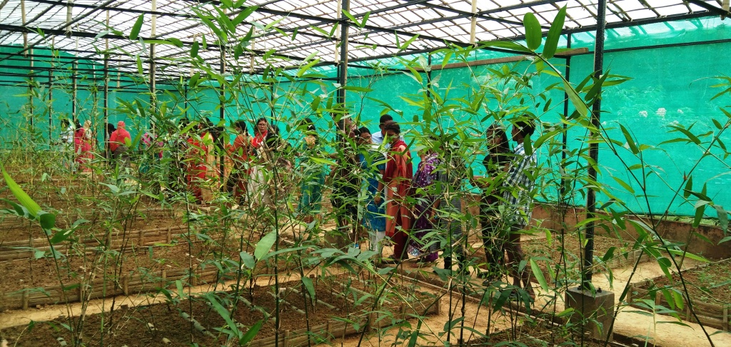 Visiting to Silviculture Nursery, Nayashehar
