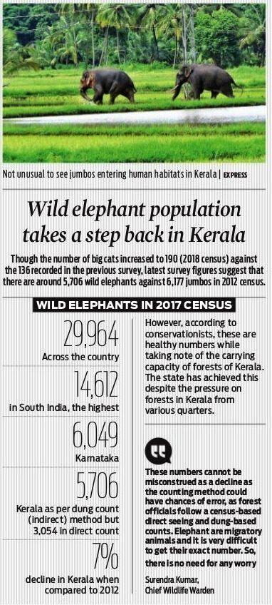 Wild elephant population takes a step back in Kerala